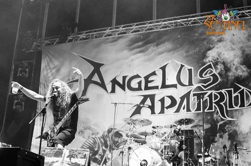 conciertos2016_angelusapatrida_1308